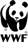 WWF | Panda Collection | Pigments by Liv