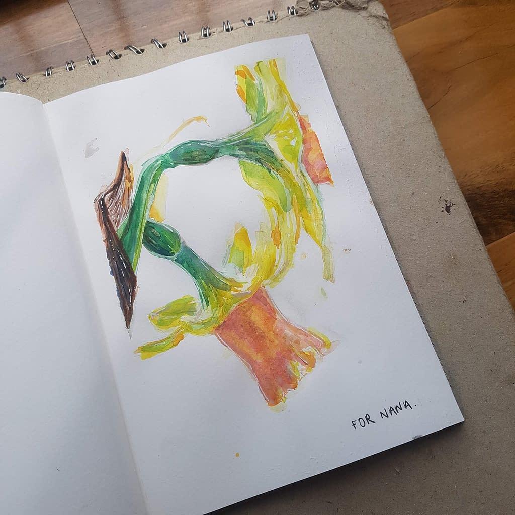 Daffodil watercolour for Nana | Pigments by Liv