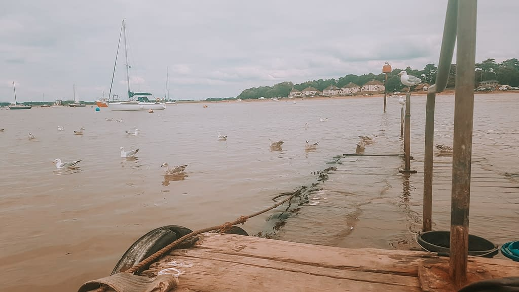 Felixstowe | 5 Beaches to visit during national marine week | Pigments by Liv
