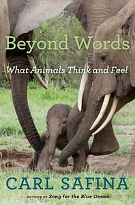 Beyond Words | 5 Books recommended by Animal Lovers | Pigments by Liv