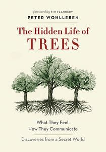 The Hidden Life of Trees 5 Books recommended by Animal Lovers | Pigments by Liv