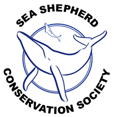 Sea Shepard Conservation Society   Pigments by Liv