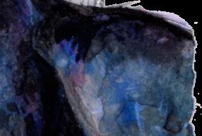 Blue base | Orca Print Close up | Watercolour Killer Whale Painting