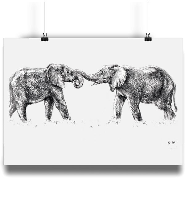 A4 Elephant Art Print | Pigments by Liv