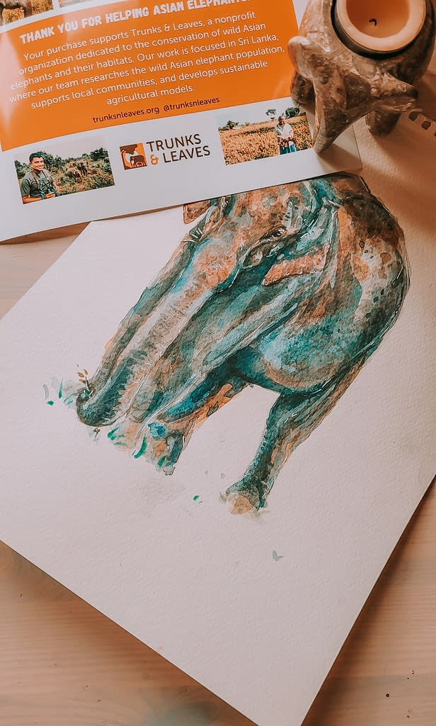 Asian Elephant Conservation - Behind the new design | Pigments by Liv