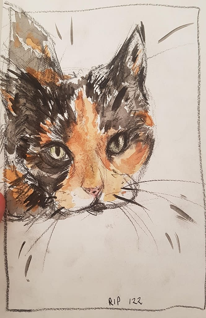 Tortishell cat watercolour Izzy | Pigments by Liv