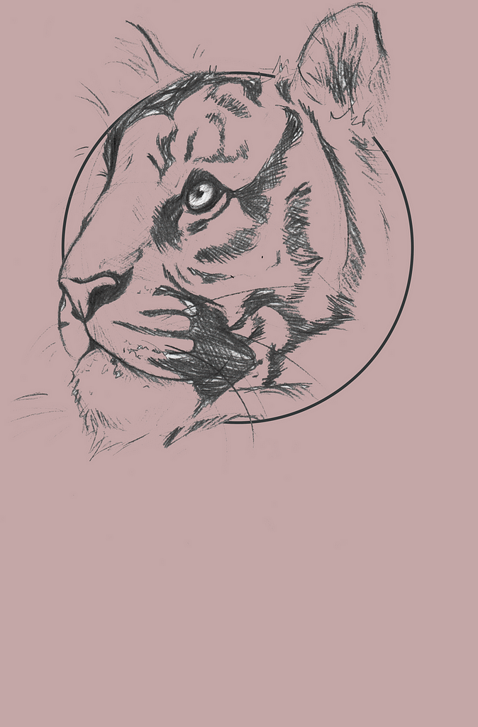 Design A | Behind the Tiger Collection | Pigments by Liv