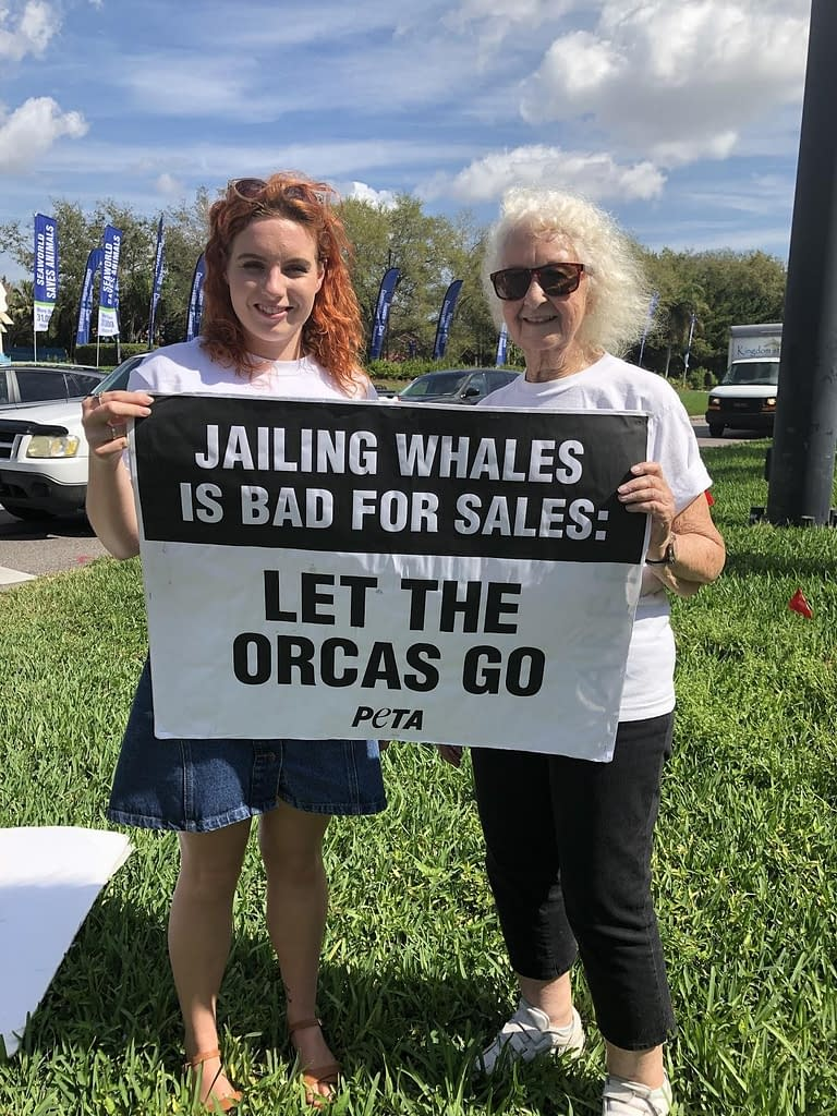 Peta Protest Media by mads | Chats with Conservationists | Whale and Dolphin Captivity