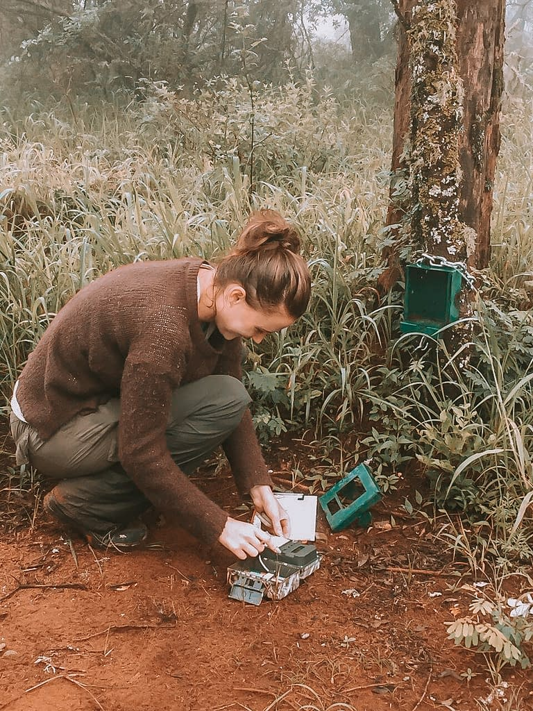 Sandi's journey into the practical side of animal conservation | Chats with Conservationists | Pigments by Liv