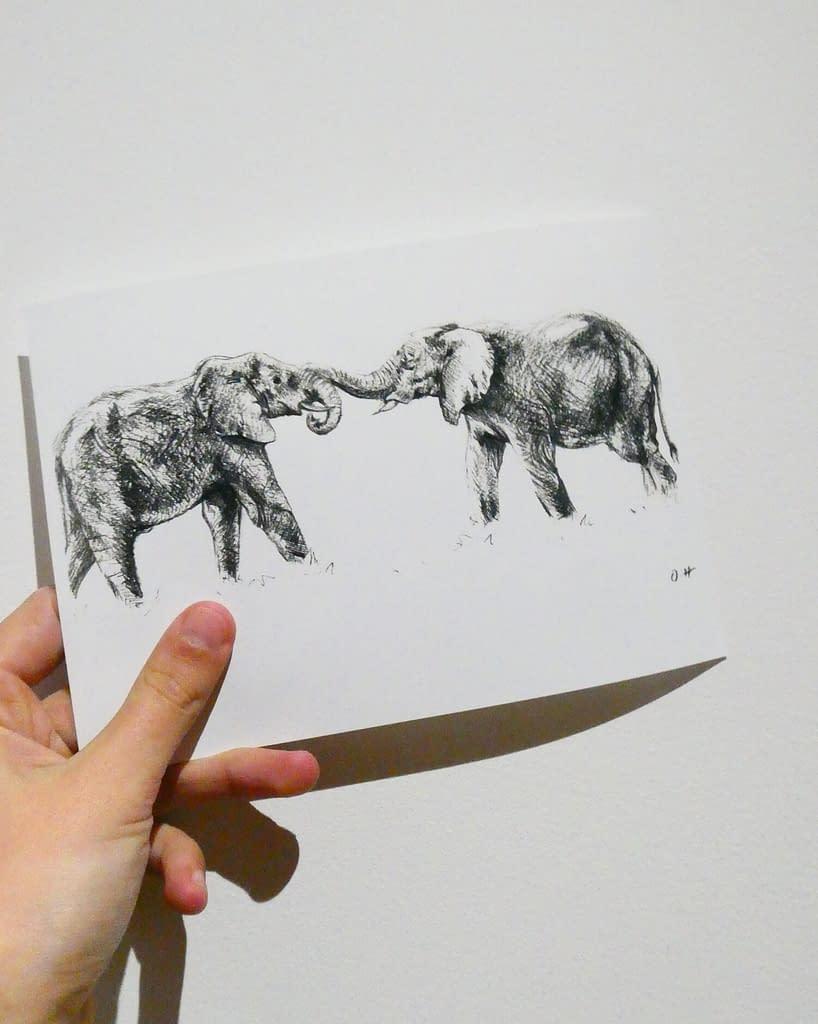 Elephant 7x5 Mini Animal Print | Pigments by Liv