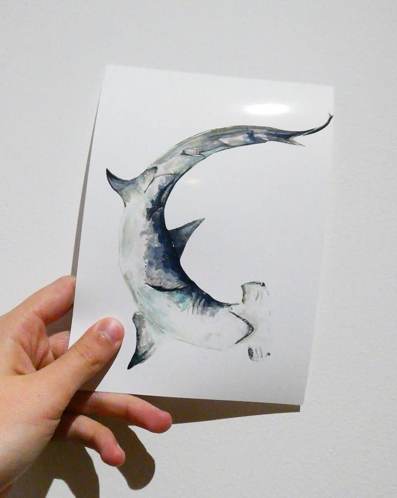 Hammerhead Shark 7x5 Mini Animal Print | Pigments by Liv