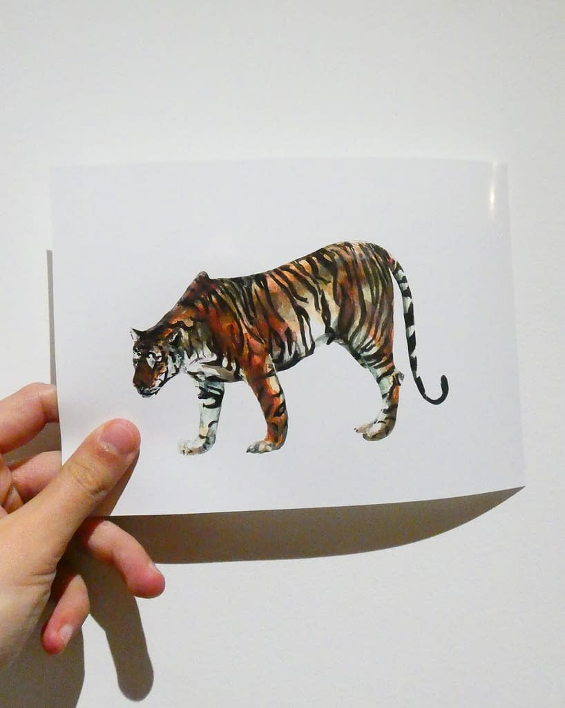 Limited Edition Tiger 7x5 Mini Animal Print | Pigments by Liv