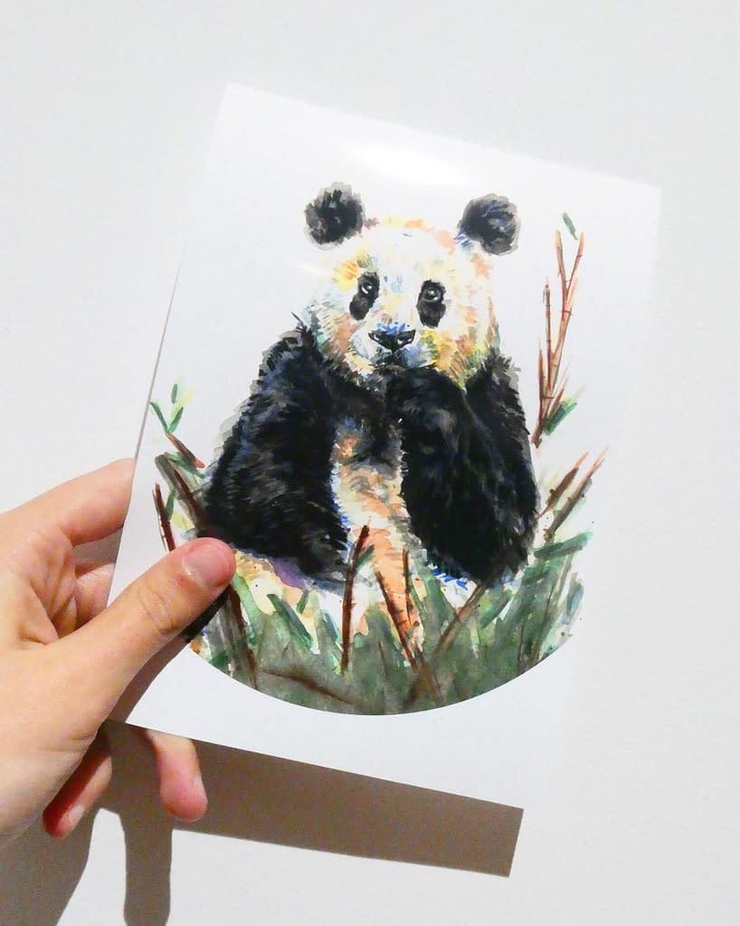 Panda 7x5 Mini Animal Print | Pigments by Liv