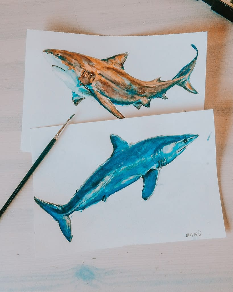 Painting sharks How do we stop shark finning | Behind the Shark Collection | Pigments by Liv