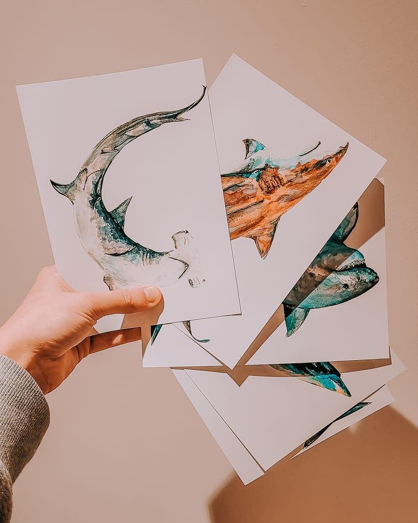Mini Shark Prints Pack | Pigments by Liv