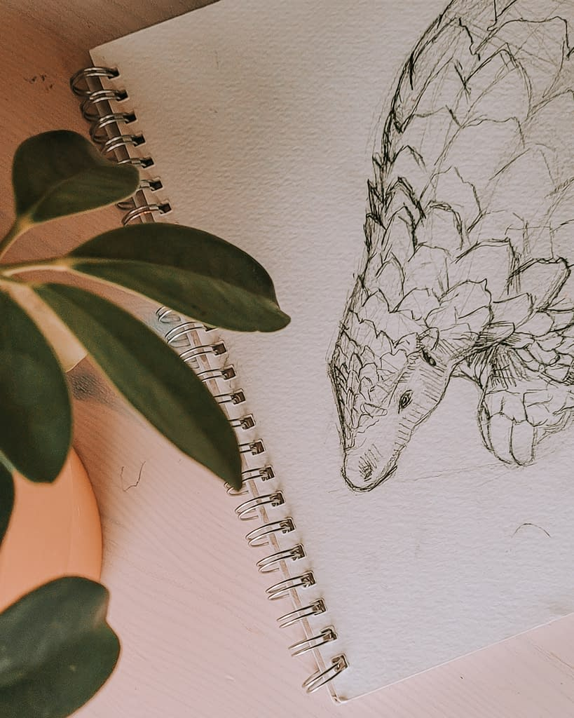 Pangolin collection | Pigments by Liv