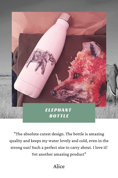 Elephant Bottle Review | Pigments by Liv