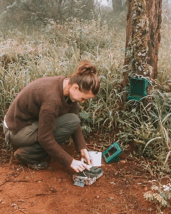Sandi's journey into the practical side of animal conservation   Chats with Conservationists   Pigments by Liv