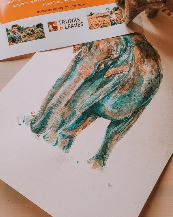 Asian Elephant Conservation - Behind the new design   Pigments by Liv
