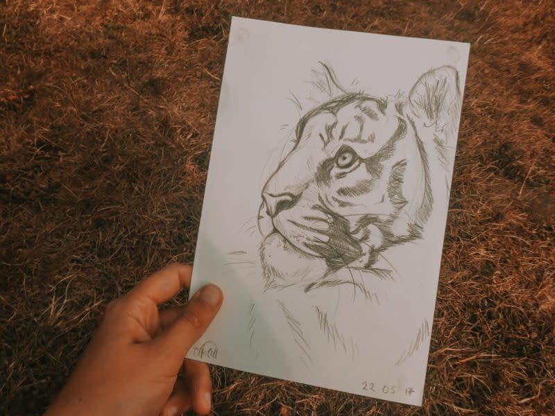 Tiger Art Print | Pigments by Liv