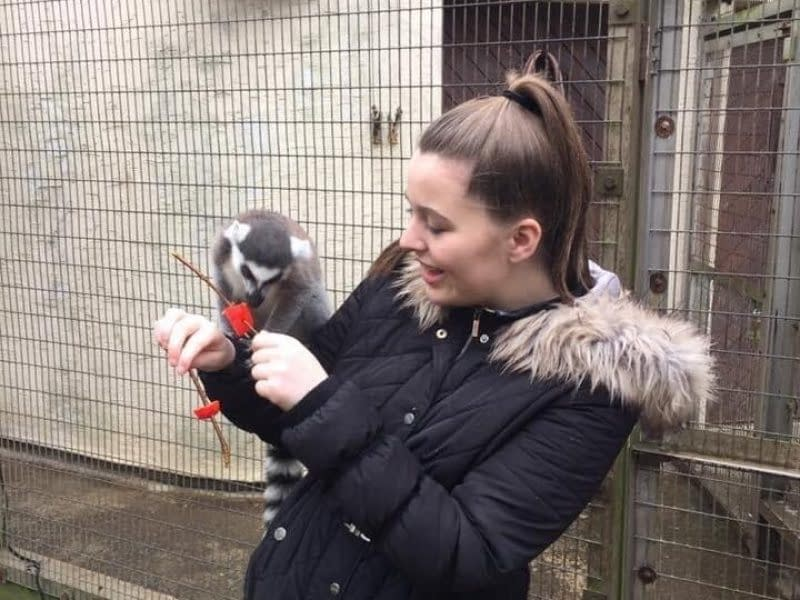 So you want to be a zoo keeper? Chats with Conservationists: Sophie   Pigments by Liv