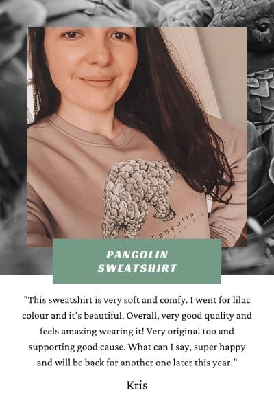 Pangolin Sweatshirt | Pigments by Liv