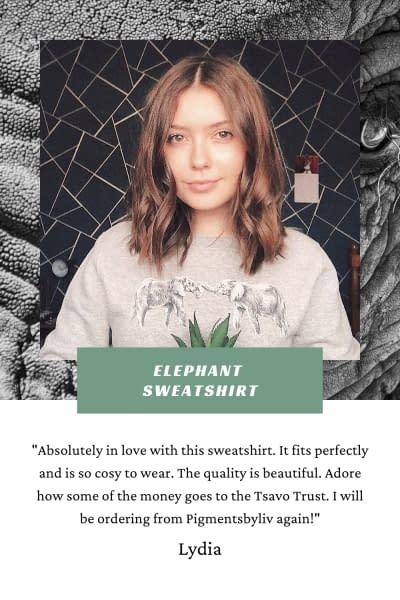 Elephant Sweatshirt Review | Pigments by Liv