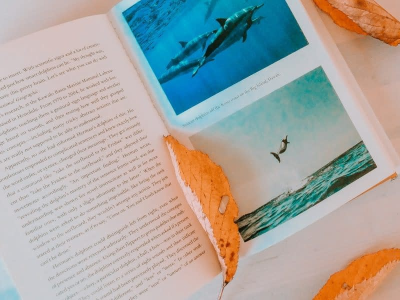 5 Books recommended by Animal Lovers | Pigments by Liv